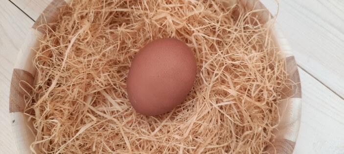 яйцо покраска к пасхе